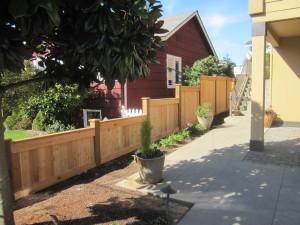 Full Panel Cedar Fence Growing in Height