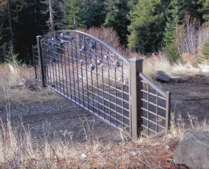 Custom Iron Gate with Grapes
