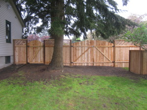 Cedar Single Gate and Double Gate Back Side