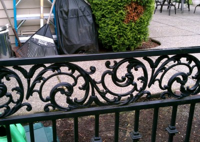 Custom Iron Vine Top Fence