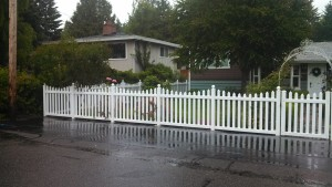 Vinyl Scallop Picket Fence